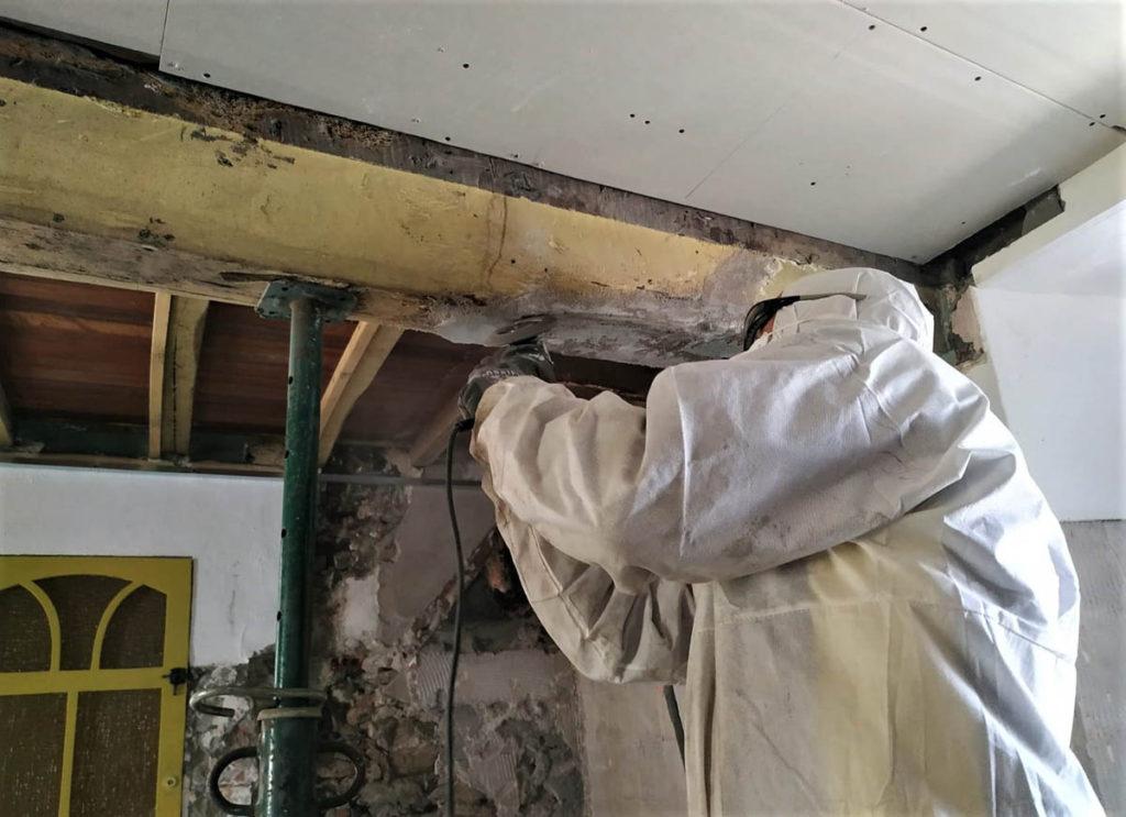 técnico especialista control plagas termitas