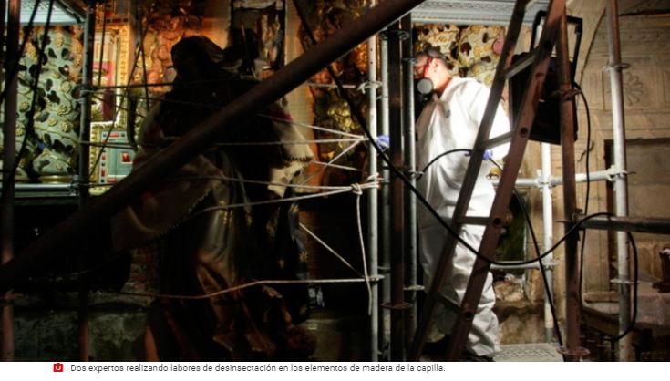 Eliminación de Termitas en la Catedral de Ourense