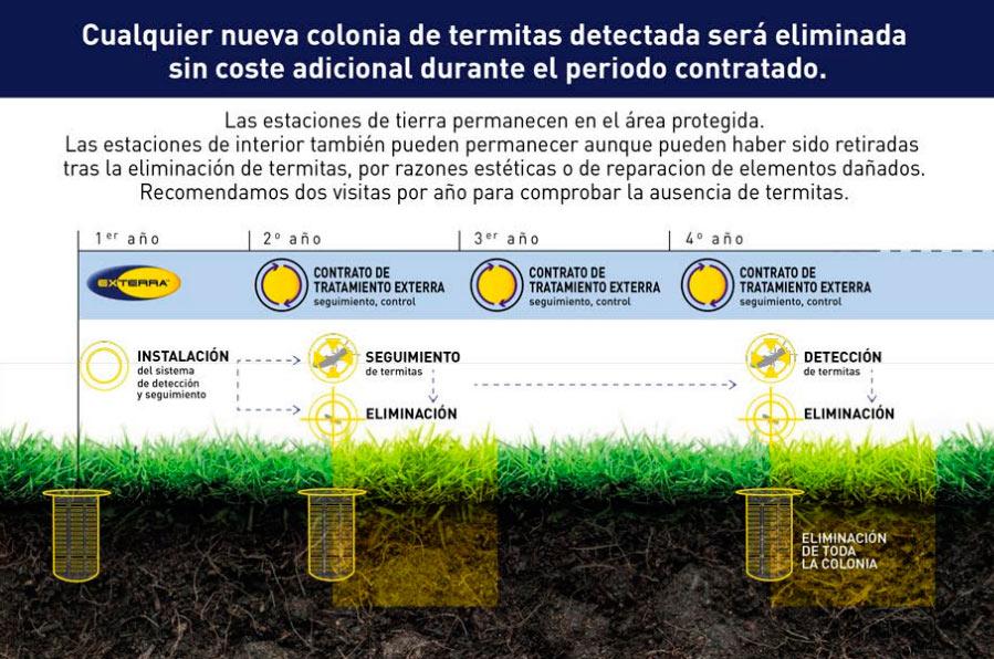 control plagas de termitas