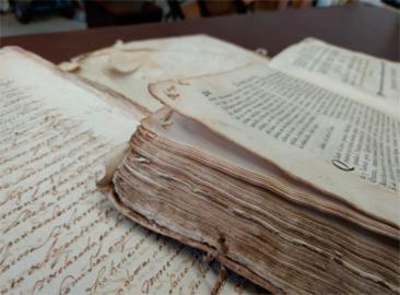 tratamiento de la carcoma en libros